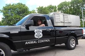 Animal Control Officer | City Of Portsmouth Jones Trailer Company Animal Control Chassis Mount Hrem Inc City Of Beaumont Texas Services Rolling Out New New Livingston Truck Officially Hits The Streets Pets For Adoption At Mesquite Shelter In Pelican Bay Ellington Ct Public Surplus Auction 853628 San Diego Gallery Custom Service Bodies California Officer Portsmouth Slidein Unit