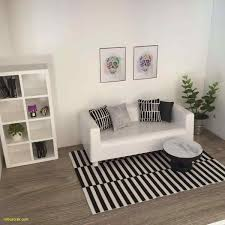 Living Room Decor Ideas Cozy Color Schemes Lovely Living Room Simple