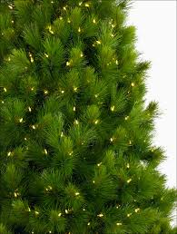 Sears Artificial Christmas Trees by Christmas Artificial Christmas Tree Clearance Elegant Decorating