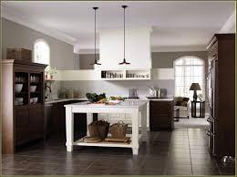 Home Depot Prefab Cabinets by Prefab Kitchen Cabinets Home Depot Home Design Ideas