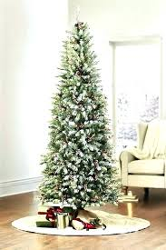 Lit Pencil Tree Get Quotations A Snow Flocked Layered Fir Slim Artificial Unlit White Christmas Pre