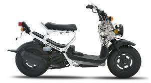 2007 Honda Ruckus Pictures Specs Motorcycles
