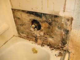 bathroom mold removal bathroom mold removal bathroom wall mold