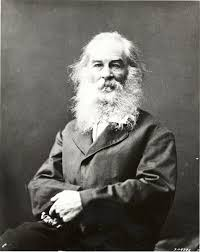 Walt Whitman The Wound Dresser Meaning by Walt Whitman Walt Whitman Pinterest Walt Whitman Tehran And