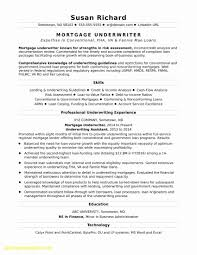 Difference Between A Resume And Cv   Resume Template The Difference Between A Cv Vs Resume Explained And Sayem Faruk Sales Executive Resume Format Elimcarpensdaughterco Cover Letter Cv Sample Mplate 022 Template Ideas And In Hindi How To Write Profile Examples Writing Guide Rg What Is A Cv Between Daneelyunus Whats The Difference