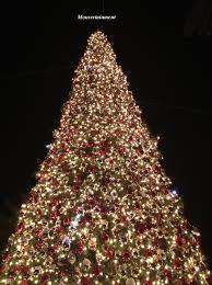IMG 7499 Sm Wm The Christmas Tree At Fashion Island