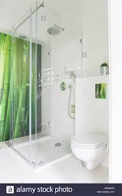weißes badezimmer mit grüner bambus tapete dusche und wc