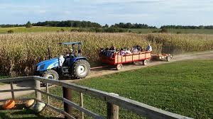 Exeter Corn Maze, Haunted Barn And Zombie Paintball - FrightFind Devon Wedding Photographer The Great Barn Ashton Jim About Us Venue Exeter Golf Club Bull Ontario Course Weddings Events And Showcasing The Nestling In An Idyllic Valley Detached Character Within Dartmoor Homeaway Bickham Bickhambarn Twitter Timeless Inn Romantic Ashridge Farm Area Toad Hall Cottages Tithe Ref Ukc515 Huxham Near 2014 Art Show Sale At Restaurant Pub This Fall Nh Homes For Brick Real Estate Group Pating Big Red Tents