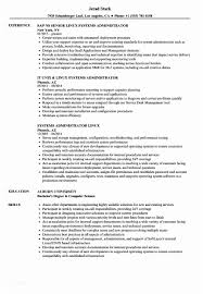 Tsm Administration Sample Resume Magnificent Jobs Linux Picture Collection Model Of