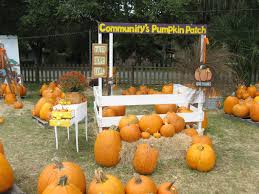 Norms Pumpkin Patch 2015 by Pastors Daryl U0027s And Debbie U0027s Cyberdesk October 2015