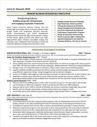 Human Resources Executive Resume Example