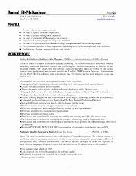 Sample Resume For 3 Years Experience In Selenium Testing
