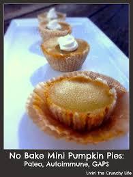 Paleo Maple Pumpkin Custard by No Bake Mini Aip Pumpkin Pies With Coconut Whipped Cream Paleo