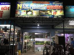 New Bhopal Fish Aquarium, Indrapuri - Pet Shops For Birds In Bhopal ... New Bhopal Fish Aquarium Indrapuri Pet Shops For Birds In Alliance Tramissions San Antonio Texas Automotive Parts Store Paint Naw Nissan Maxima A36 Oe Style Trunk Spoiler 1618 Ebay Amazoncom 001736 Inspirational Quote Life Moves Pretty Fast Nee Naw Our Cute Fire Engine Quilt Has Embroidered And Appliqu Travel By Gravel On Trucks Cars Pinterest Chevy Welcome To Chicago Chevrolet Dealership Rogers Wester Star The Road Serious Limited Edition Dickie Toys Large Action Fighter Vehicle
