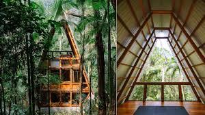 101 Paraty House Monkey In Brazil By Atelie Cabin