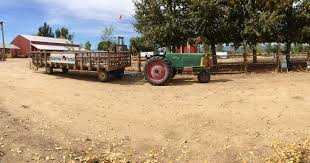 Pumpkin Patch Farms In Phoenix Az by Anderson Farms A Colorado Tradition Our Traveling Blog