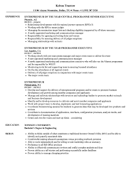 Entrepreneur Resume Samples | Velvet Jobs Resume Of Entpreneur Examples It Consultant Best 64 Us Sample Jribescom Sales Presentation Powerpoint Advanced Simple Html Fresh For Example Of Successful Tpreneurs Resume Startups Fascating Writing Business Start Up For Your Cto Full Stack Developer By Template Budget Pin Susan Brown On Rources Cover Letter Samples Unique Awesome Summary Atclgrain