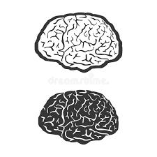 Human Brain Coloring Book Download Vector Symbol Medicine Think Icon Stock