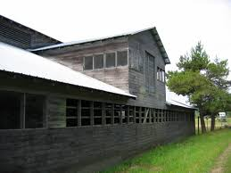 Poultry Barns And Houses | Historic Barns Of The San Juan Islands Alexander County Nc Poultry Farm And Historic House Barn Doors Eyeem Stepping Into Steryear At The Blue Earth Fairgrounds Best Meal Of 2016 Hill Stone Barns Eat Sleep Motlow George Dickel Manchester Bonnaroo Coffee Under Contract Big Cabin 100 Acres Oklahoma Land Elkuntryhescom Online 22000 Chickens Killed In Ashland Fire Fox8com 6 Broiler The Elrod Group 79 Best Pet Oh Boy Images On Pinterest Boys Chicken Commercial Buildings King City Lumber Mound