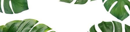 Decorative Lumbar Pillow Target by Decorative Pillow Global Decor Target