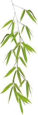16 99 kleine wolke fenstersticker bamboo kleine