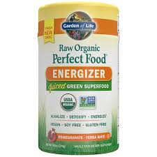 Garden of Life Vegan Green Superfood Powder Raw Organic Perfect Whole Food Energizer Dietary Supplement