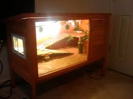 Bearded Dragon Heat Lamp Broke by Best 25 Bearded Dragon Enclosure Ideas On Pinterest Bearded
