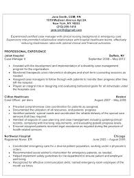 Download Sap Project Manager Resume Sample Implementation Software Security Erp
