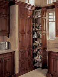 Pantry Cabinet Design Ideas by Classic Brown Polished Teak Wood Pantry Cabinet With Pull Out Herb