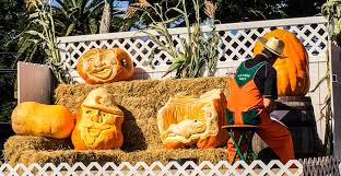 Pumpkin Fest Half Moon Bay by Coastside Slacking Chilling On The California Coast