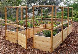 Gronomics Raised Garden Bed by Elevated Garden Beds For Your Standing Gardening Needs