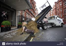 2 Members Of PETA Dump A Truck Load Of Horse Manure Outside Gordon ... Usd 98786 Remote Control Excavator Battle Tank Game Controller Dump Truck Car Repair Stock Vector Royalty Free Truck Spins Off I95 In West Melbourne Video Fudgy On Twitter Dump Truck Hotel Unturned Httpstco Amazoncom Recycle Garbage Simulator Online Code Hasbro Tonka Gravel Pit 44 Interactive Rug W Grey Fs17 2006 Chevy Silverado Dumptruck V1 Farming Simulator 2019 My Off Road Drive Youtube Driver Killed Milford Crash Nbc Connecticut Number 6 Card Learning Numbers With Transport Educational Mesh Magnet Ready