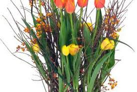 can you save potted tulip bulbs home guides sf gate