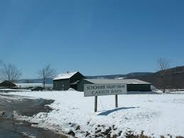 Panoramio - Photo Of Carrot Barn Home Welcome To The Village Of Schoharie New York A Quaint Blog Farm Share Studio Corbin Hill Food Project By Policylink Lifting Up What Works Organic Farming 20something Vironmentalist Retail Specialty Agriculture Chamber Irene Courage Hope Mark Farm Life With Photo Gallery The County Cnyfresh Experts Say Valley Flooding Likely Increase Daily Businses Come On In Were Open Lakeside Farms Rules Favorite Cider Doughnut Poll