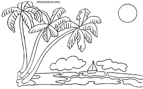 Coloring Book Palm Tree
