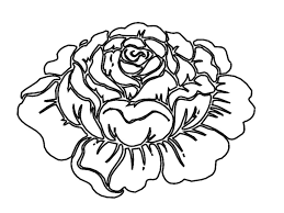 Image Of Rose Coloring Pages To Print