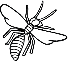 Wasp Insect Coloring Pages