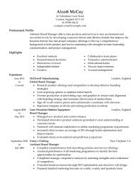 Best Brand Manager Resume Example