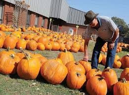 Pumpkin Patches In Okc by Christ Umc Pumpkin Patch Starts Sunday News Enidnews Com