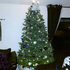 Christmas Tree Lane Ceres Ca Address by Heidi U0027s Fresh Christmas Trees Temp Closed 27 Photos U0026 10