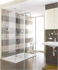 Bathrooms Design Wonderful Modern Shower Tile Design Brown Theme
