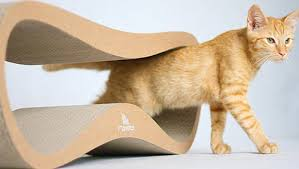 modern cat mykitty modern cat beds and scratchers design milk