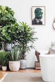 a leafy bathroom styleminimalism arredamento
