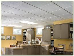 armstrong commercial kitchen ceiling tiles walket site