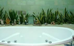 Good Plants For Bathroom by 12 Creative Ways To Use Plants In The Bathroom