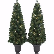 Potted Christmas Tree by Find More Gluckstein Home