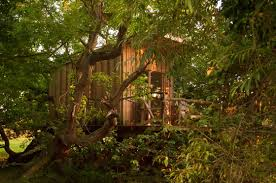 100 Tree House Studio Wood Design 31 Landscape Architecture