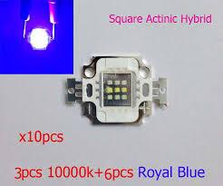 square actinic hybrid 10w royal blue cold white 10000k high power