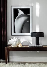 schwarz weiß poster porträts tiere fotokunst postery