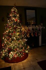 Best Kind Of Christmas Tree by Andiamo November 2014